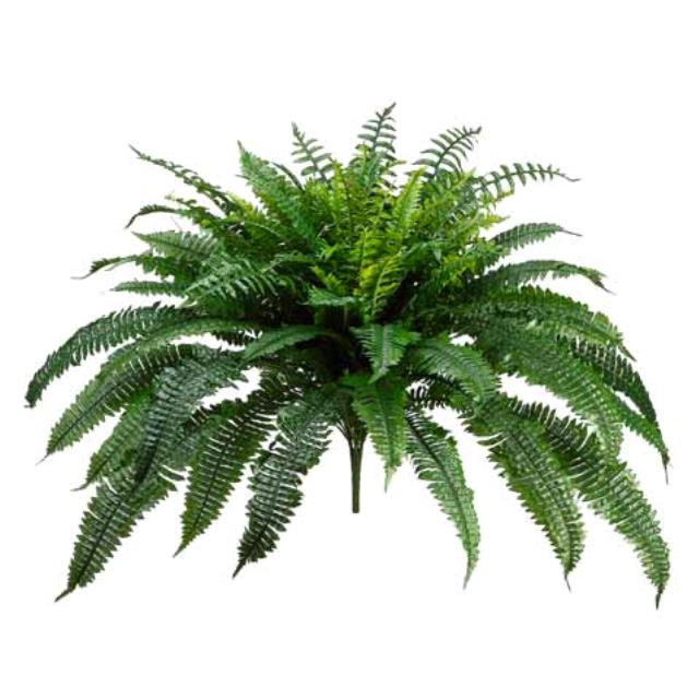 Where to find GREENERY, FERN LARGE SILK POT in Lake Charles