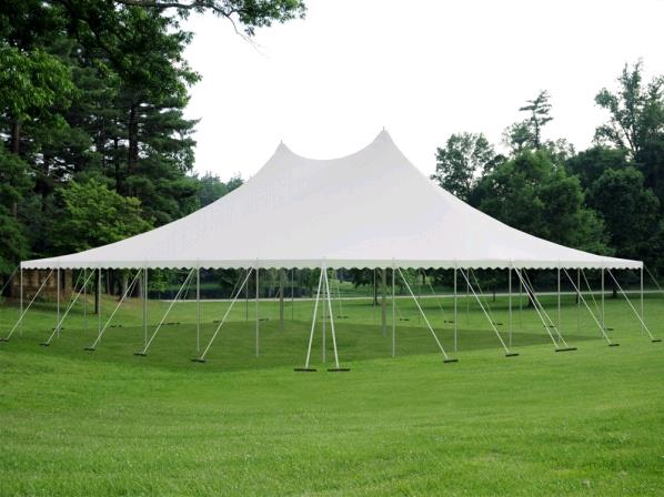 Where to find TENT, 60 X100  TWIN POLE WHITE in Lake Charles