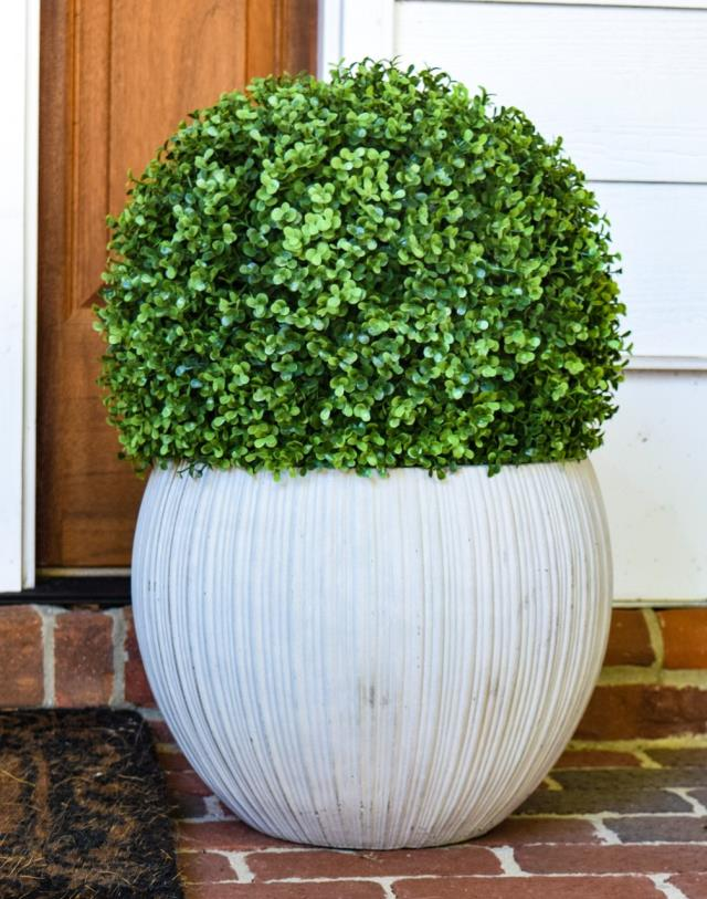 Where to find GREENERY, BOXWOOD BALL 15 in Lake Charles